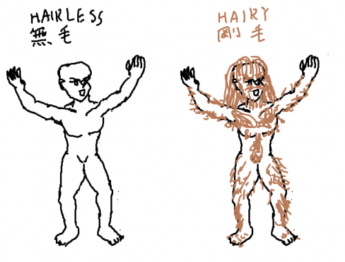 hairless-and-hairy0d02e3605d510059.png